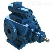 雙螺桿泵|進口雙螺桿泵