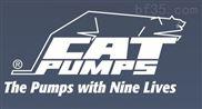 貓牌泵—157R080