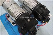 DP-100高壓微型隔膜泵,噴霧泵