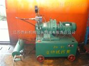 电动试压泵 便携式试压泵  小型试压泵