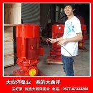 XBD-L立式单级消防泵,高扬程消防泵,XBD增压消防泵