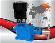 計量泵廠家 2DZ-X系列柱塞式計量泵