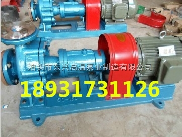 ry100-65-250高温热油泵