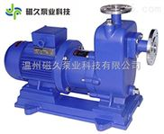 廠家直銷自吸式磁力泵