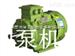 东莞电机 YE3系列 超高效率 三相异步电动机
