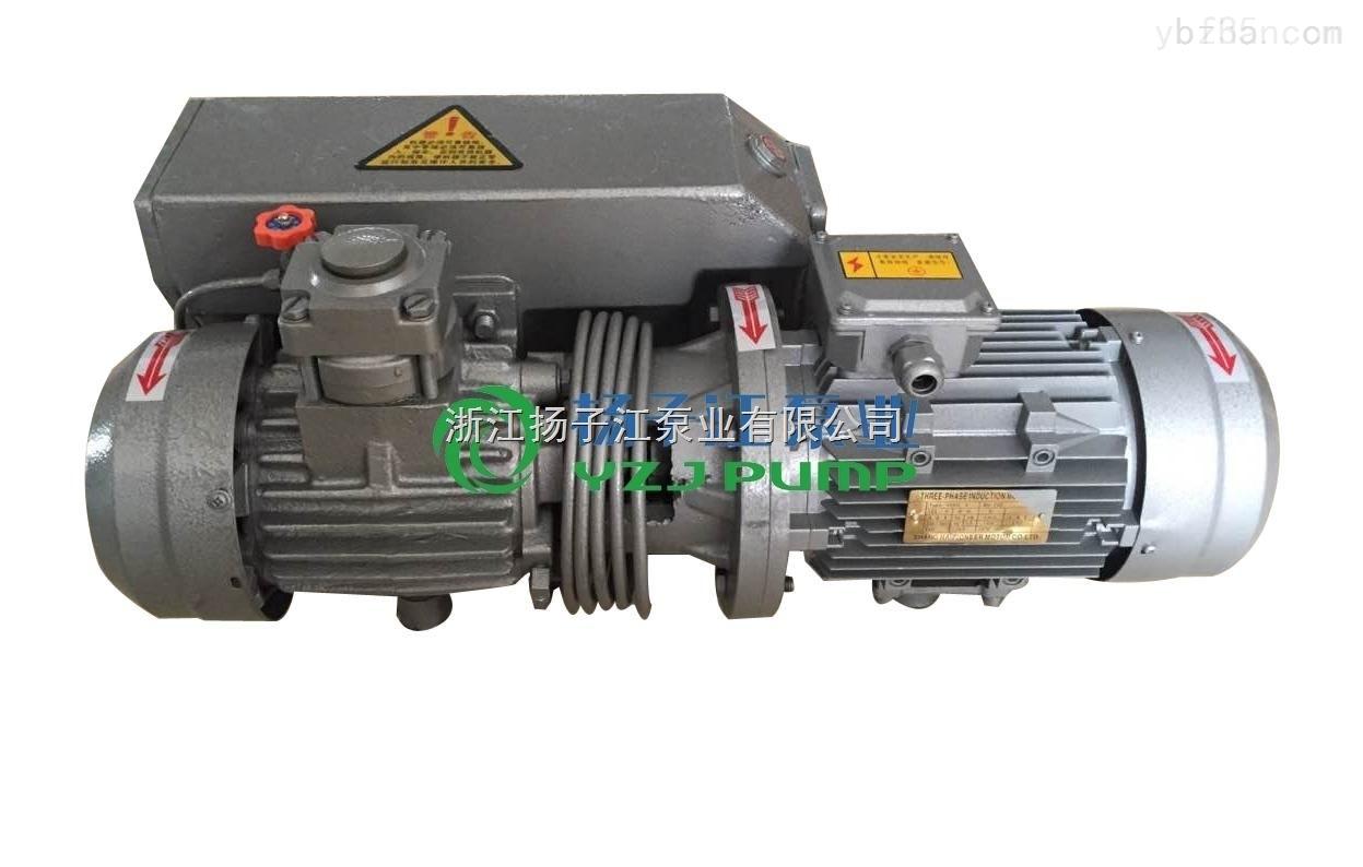 *XD-010单级旋片式真空泵 真空包装泵