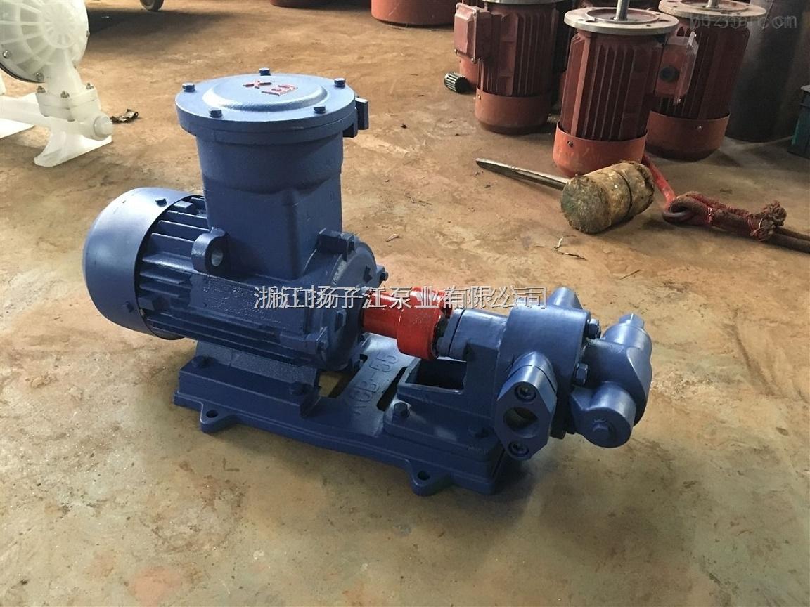 齿轮泵 高质量齿轮泵 YCB润滑油泵 2CY不锈钢齿轮油泵
