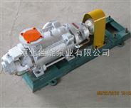 打蒸汽的水泵-佳能水泵