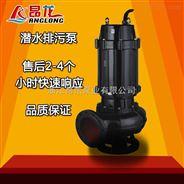 WQ潜污泵污水提升泵 无堵塞污水泵池塘清淤排污泵